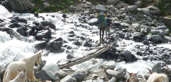 Shepherd Trail